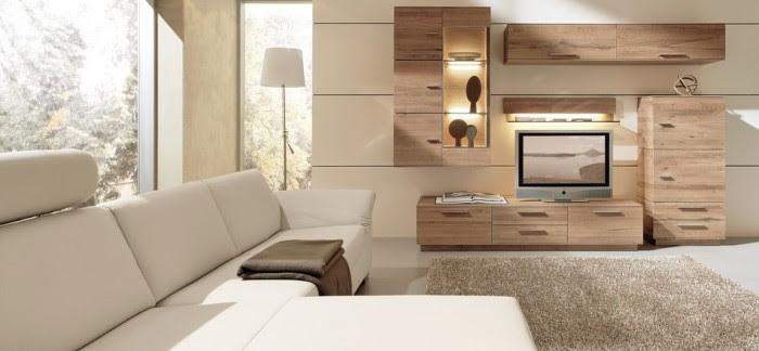 modern living room woods