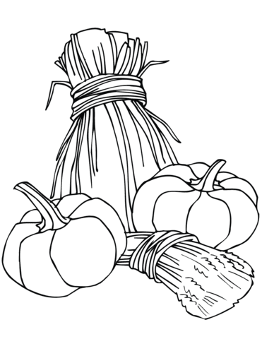 pumpkins and wheat sheaves coloring page  free printable