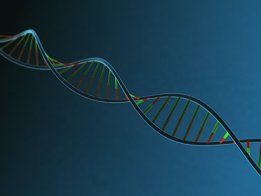 Mysterious DNA Modification Seen in Stress Response