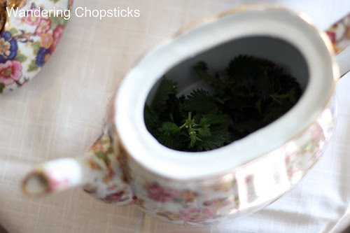 Stinging Nettle Tea 3