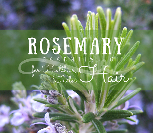 Rosemary Essential Oil for Healthier, Thicker Hair - PNW from Scratch