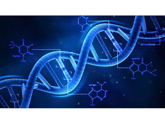 DNA Cryptography and Information Security - InfoSec Institute