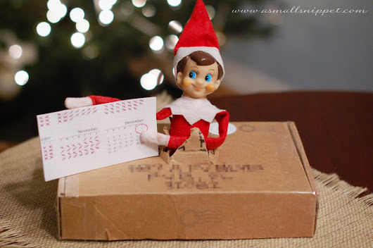 Elf on the Shelf Ideas Week | Day 2