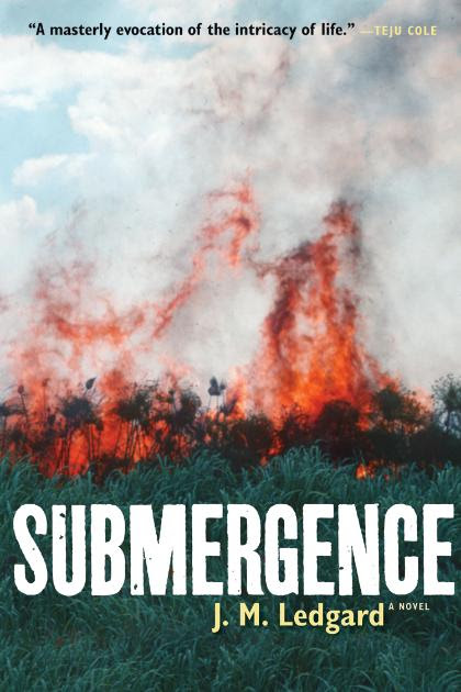 Submergence by JM Ledgard