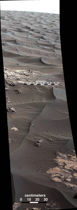 The rippled surface of the first Martian sand dune ever studied up close