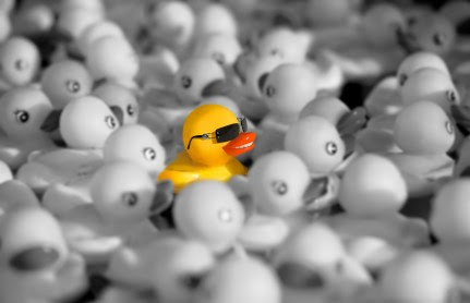 4 Ways to Stand Out in Paid Search | Anvil