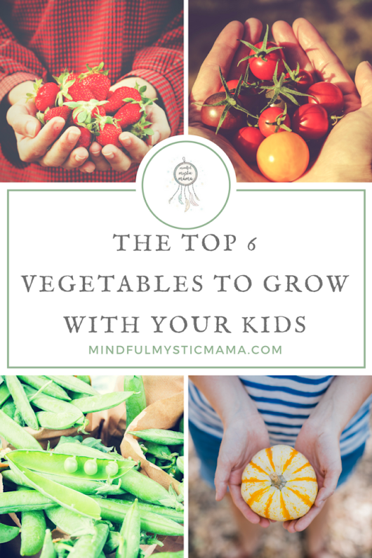 The Top 6 Vegetables to Grow with Your Kids - Mindful Mystic Mama