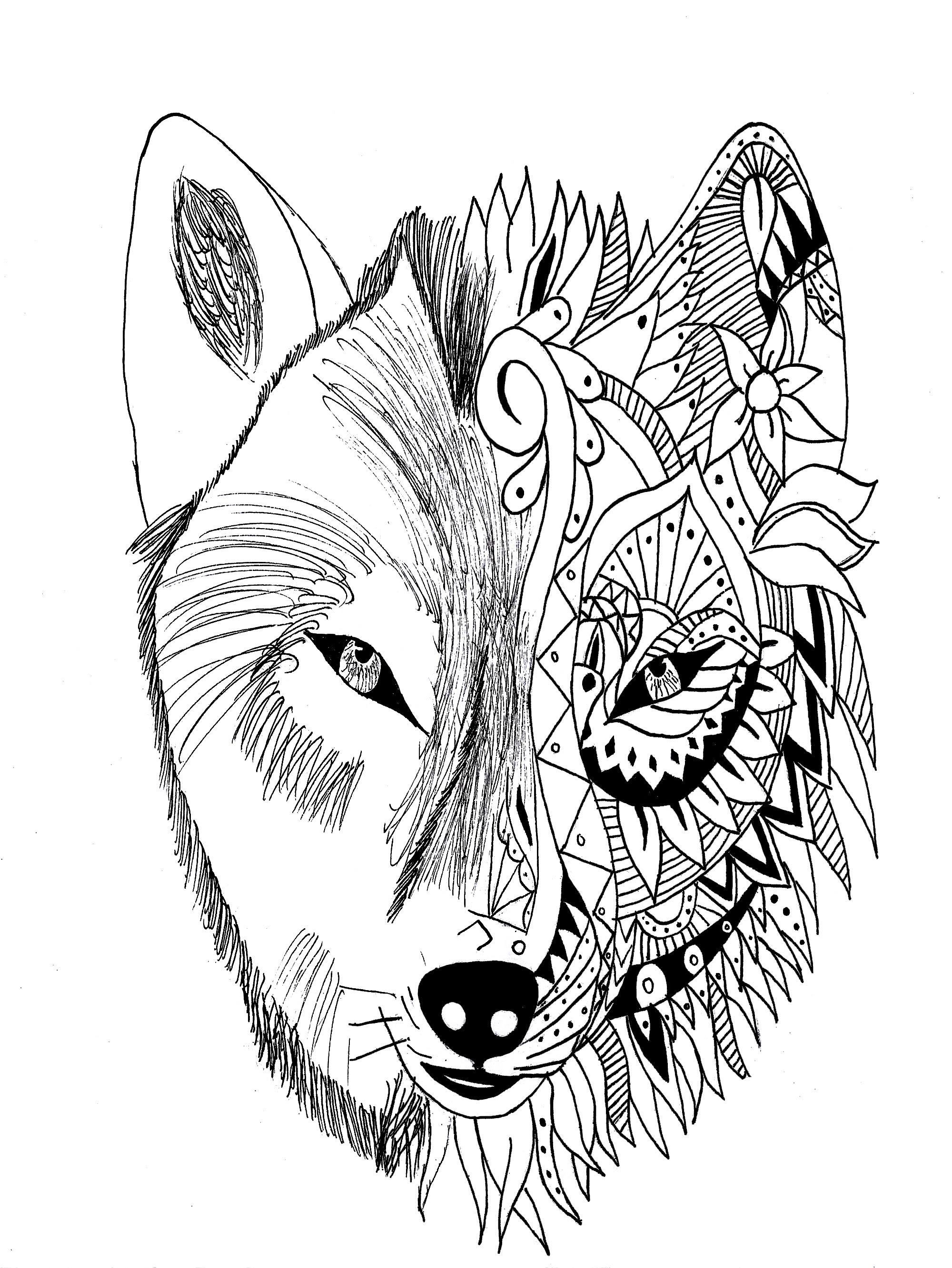Realistic Wolf Drawing at GetDrawings | Free download
