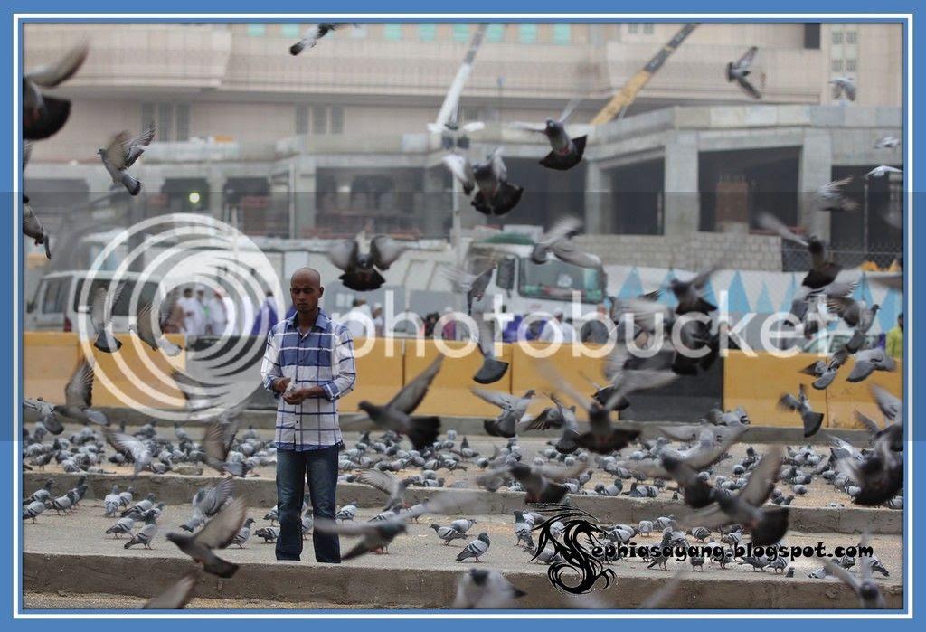 photo Picture20_zpsqhqwf7aq.jpg