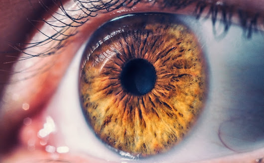 Best Eye Doctors in Pembroke Pines- Elite Vision - Tenoblog