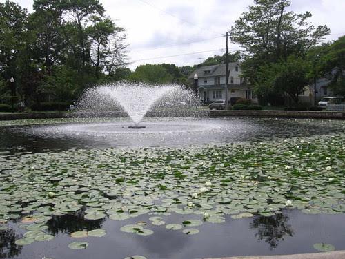 Halcyon Park