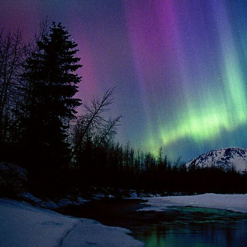 Northern-Lights-Over-Portage-aurora boreal. River Valley,-Alaska