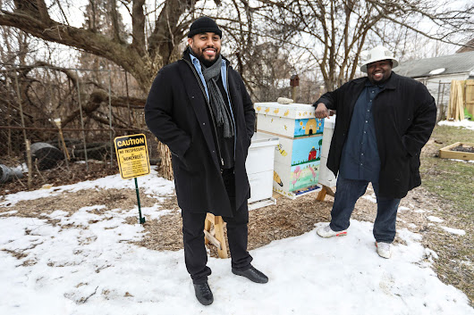 Backyard beekeepers try saving Detroit, the world