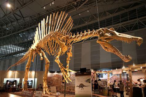 spinosaurus  lost dinosaur