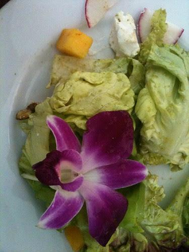 Mango & Goat Cheese Salad @ Dosa