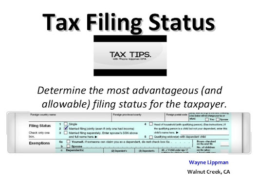 Wayne Lippman presents Tax Filing Status Guide