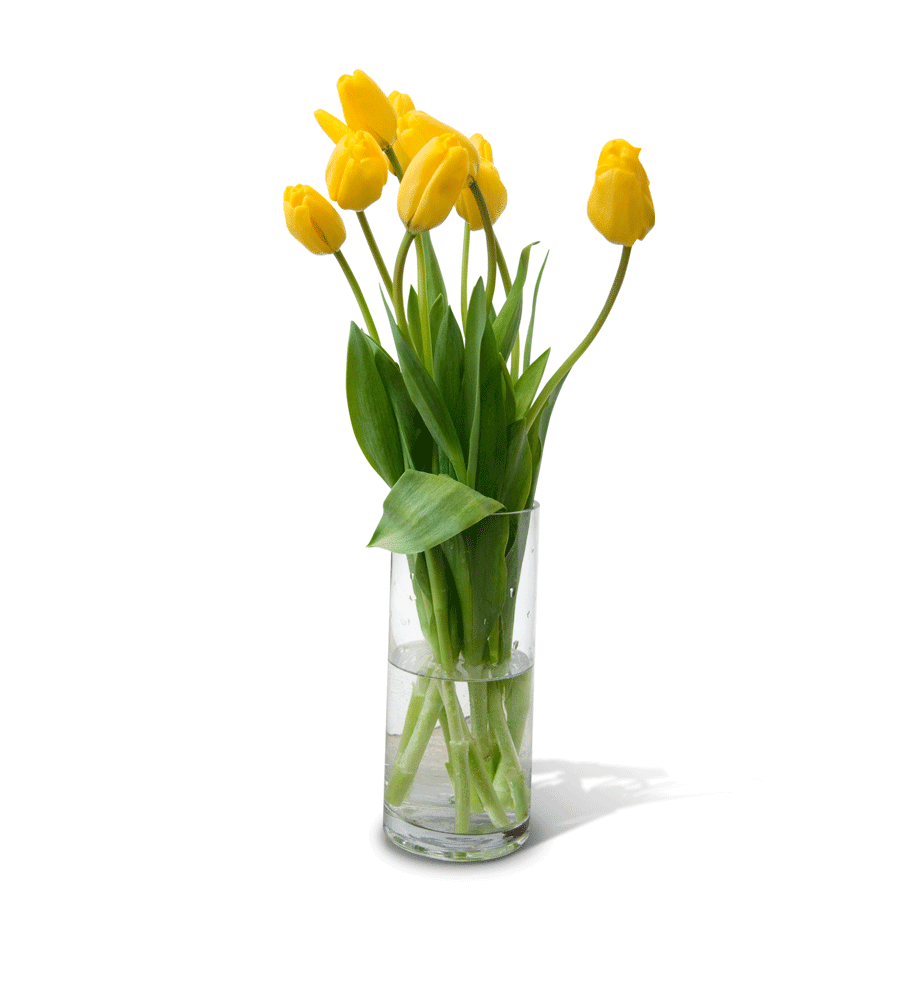 Flower Vase PNG Free Download | PNG Mart