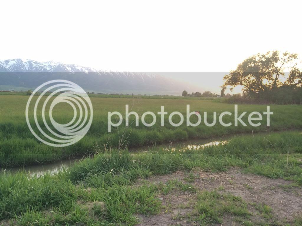 photo 957788E7-8BB6-4A8F-B56D-EC0B86FC01FA.jpg