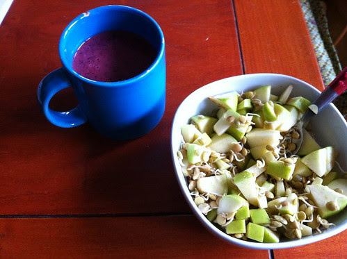 blueberry strawberry smoothie and sprouted lentils with apples by unglaubliche caitlin