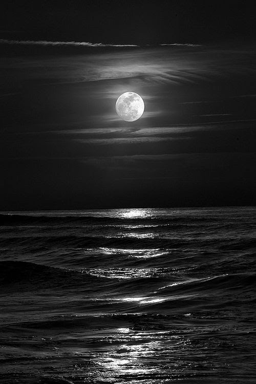 sea photography 13
