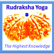 Rudraksha Yoga Site Update: First Anniversary of the Blog!