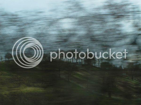 74 photo 74IMG_3247_zpsac69ddad.jpg