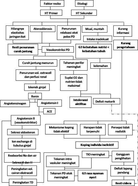 Diagnosa Keperawatan Hipertensi Pada Ibu Hamil