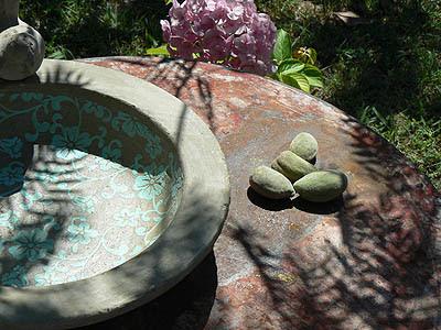 table jardin kiné.jpg