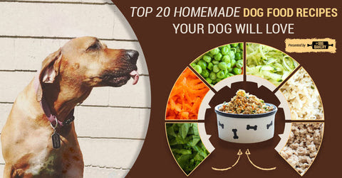 Top 20 Healthy Homemade Dog Food Recipes Your Dog Will Love The Dog Bakery