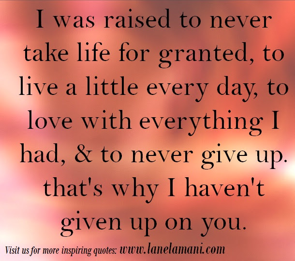 Quotes About Never Take For Granted 55 Quotes