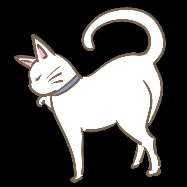 ツンとした白猫のイラスト かわいいフリー素材が無料のイラストレイン
