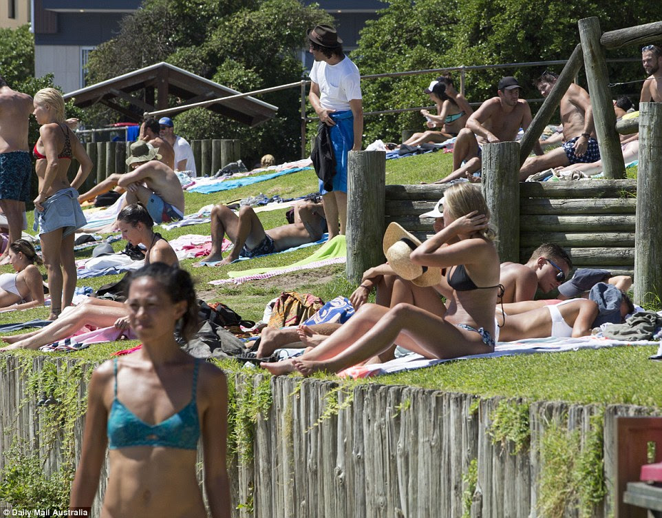 People sunbake on the grassy knol at North Bondi Beach, taking advantage of record temperatures and sunshine to work on their tans