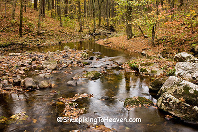 Otter Creek at Baxter's Hollow, Sauk County, Wisconsin