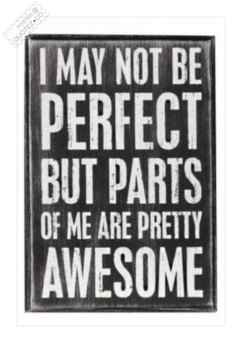 I May Not Be Perfect Funny Quote Quotezco