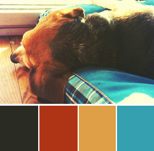 color-palette-blog-beagles-meadow