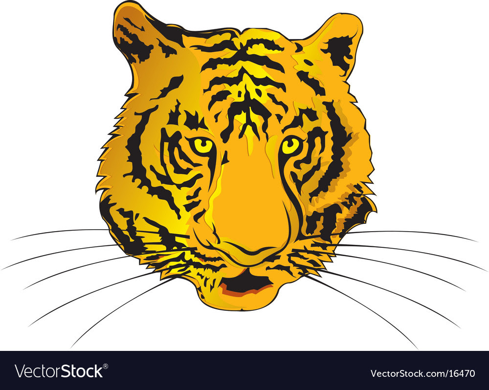 Tiger Face Vector Art 2011