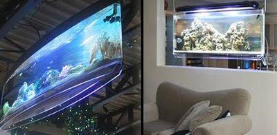 Aquário suspenso: Pode ser usado como divisor de ambientes e lembra uma televisão de LCD