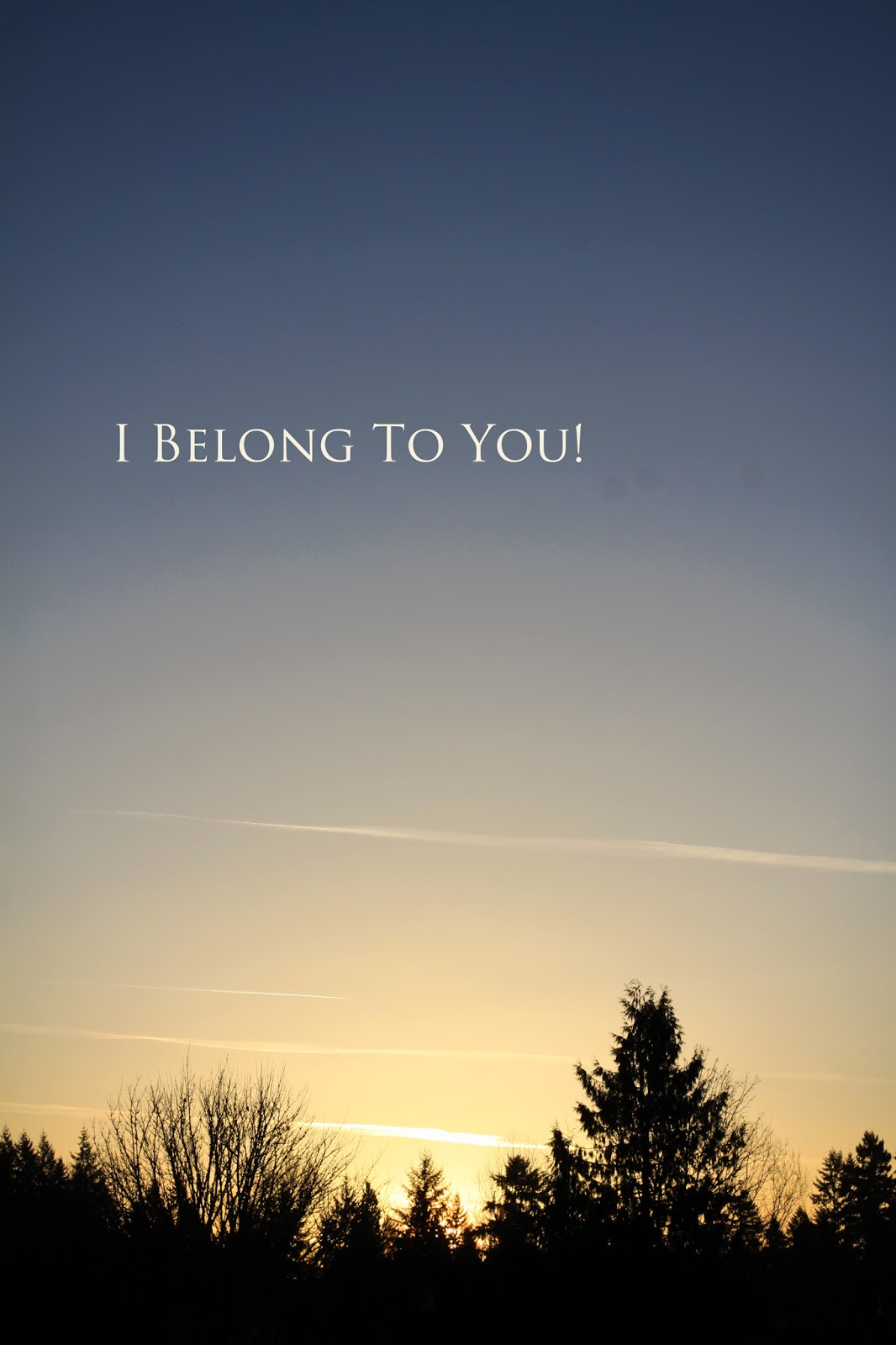 Quotes About Belonging To A Group 61 Quotes