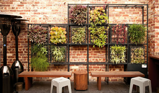 5 Major Benefits Offered by Holistic Vertical Green Walls