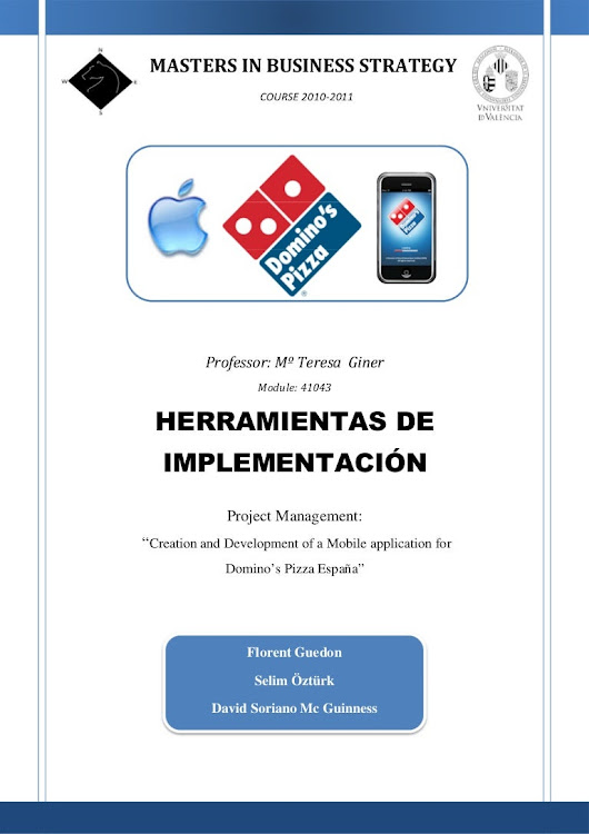 Domino's Pizza Project