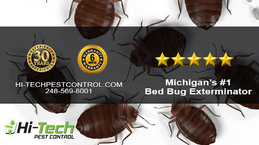 Just Encase - Bed Bug Precautions - Bed Bug Exterminator and Pest Control Services | Hi-Tech Pest Control
