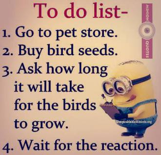 Joke For Tuesday 01 December 2015 From Site Minion Quotes Funny