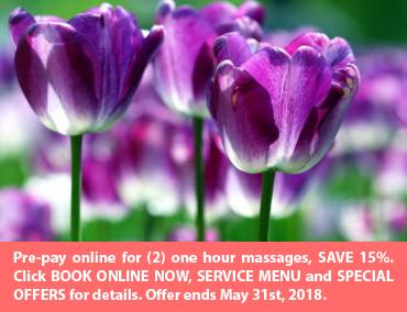 Massage Therapy, Lansing MI