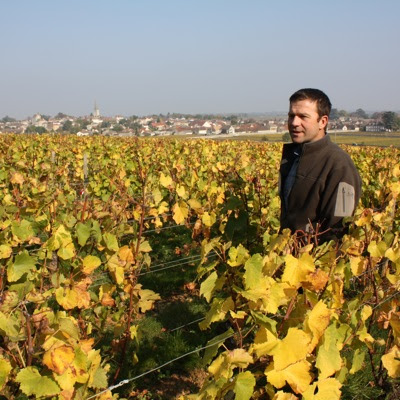 Arnaud Ente in his 1er cru vineyard La Goutte d'Or, the village of Meursault is on the background