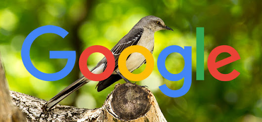 Google Mocks SEO Experts Who Place Mass Content On Footer