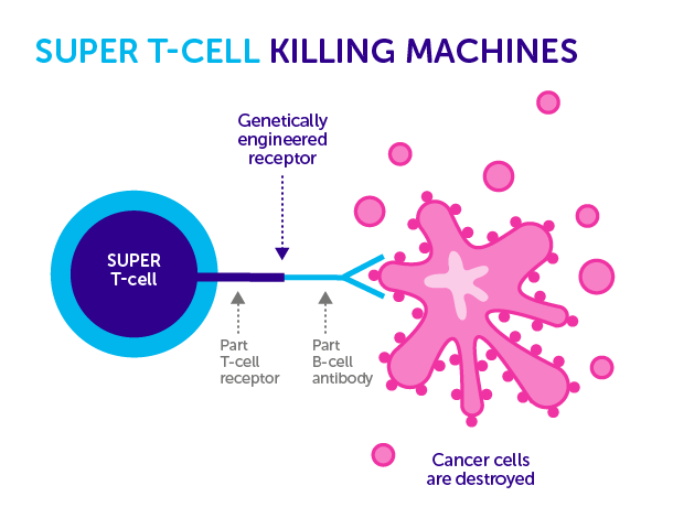 New Way To Manipulate Immune Cells May Treat Cancer, Autoimmune Disease