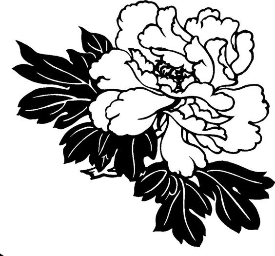 Download Floral Hawaiian Flower Black And White Clipart Png Free