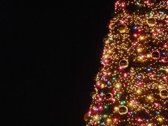 宝石のように綺麗なイルミネーションのクリスマスツリーの写真素材フリー