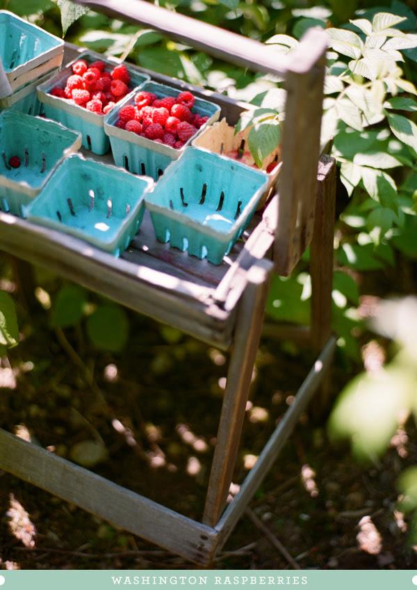 2012_0725_Raspberries01.jpg