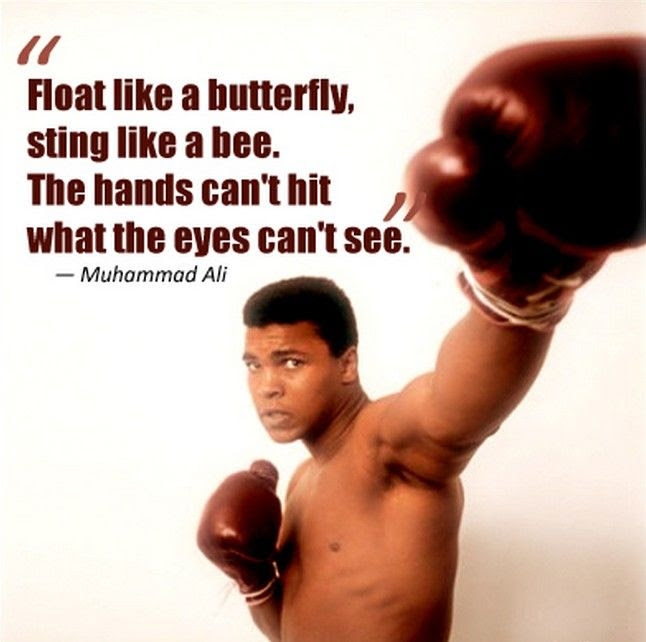 Float Like A Butterfly Pictures Photos And Images For Facebook